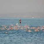 Segmento de natación, Triatlón Ican Mallorca 2011.